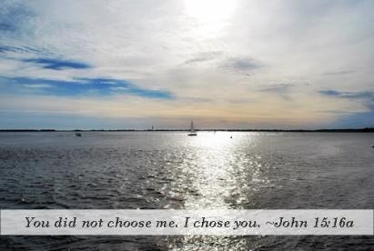 I Chose You 1